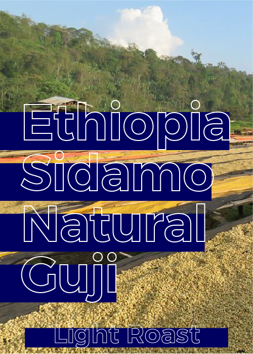 Ethiopia Sidamo Guji Natural | Light Roast