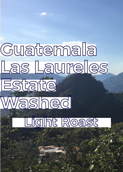 Guatemala Los Laureles Estate | Light Roast