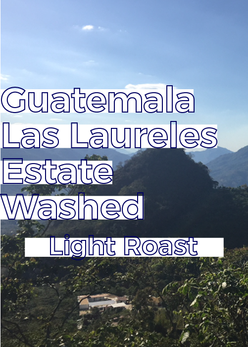 Guatemala Los Laureles Estate | Light Roast