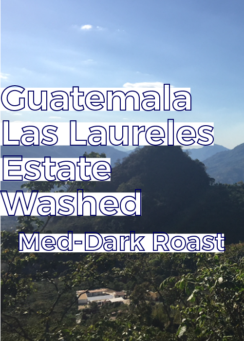 Guatemala Los Laureles Estate | Medium-Dark Roast