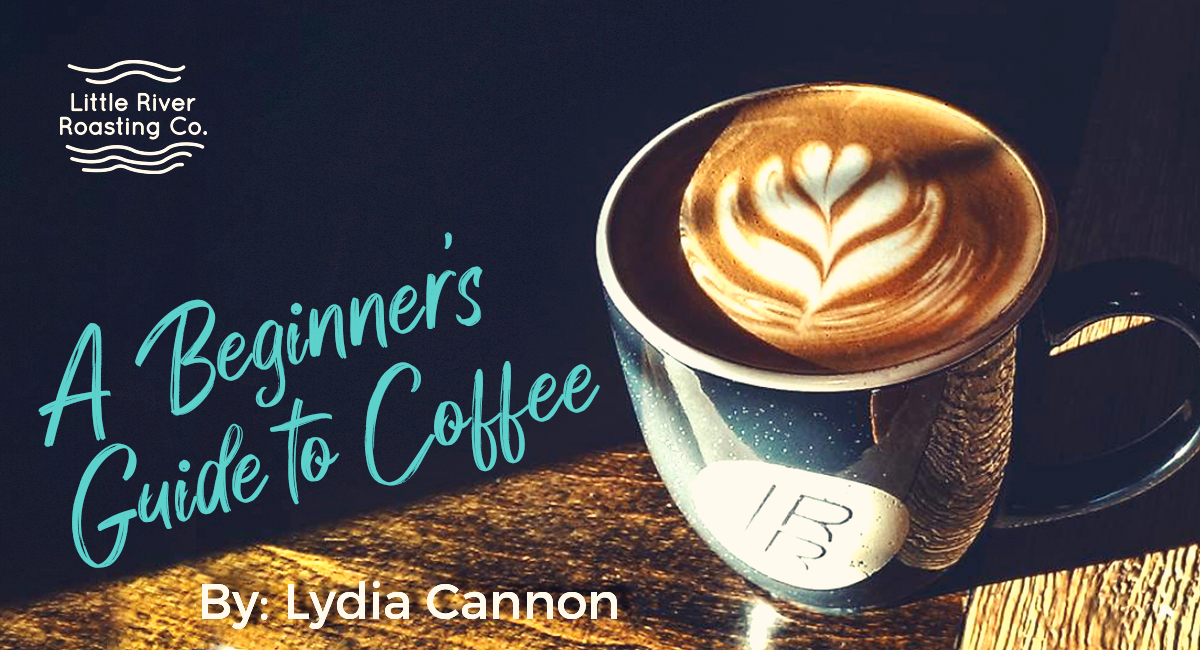 I Don't Drink Coffee, but I Want to: A Beginner's Guide to Coffee
