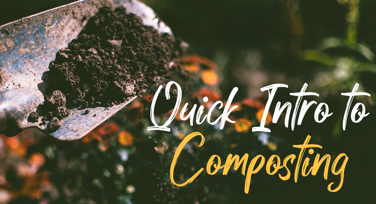 Quick Intro to Composting